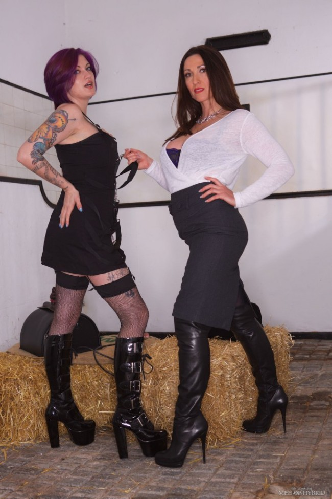 leather boots Sybian ride, Miss Hybrid, Gabriella, stockings, nylons, stocking tops, thigh boots, busty, mistress